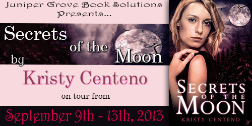 Secrets of the Moon Banner