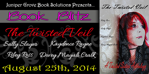 The Twisted Veil Blitz Banner