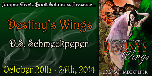 Destinys Wings Banner