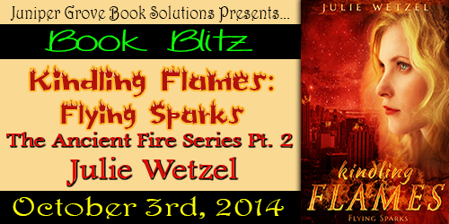 Flying Sparks Blitz Banner