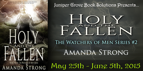 Holy and the Fallen Tour Banner