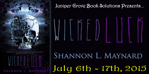 Wicked Luck Tour Banner