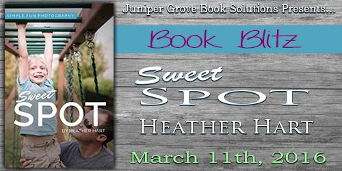 Sweet Spot Banner