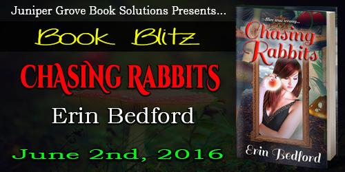 Chasing Rabbits Blitz Banner